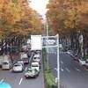 2008_121408 11月16日0084