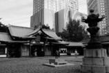 日枝神社11