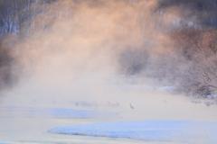 凍らない川
