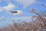 spring Jetstar