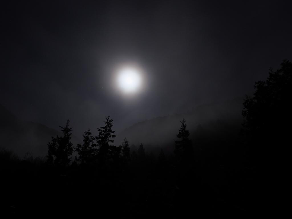 月がきれいの画像 p1_9