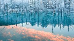 青い池 雲流れる朝