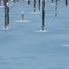 The Blue Sherbet Pond 4