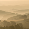 セピアの丘
