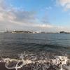 海の公園 at 横浜