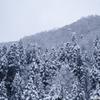「僕にとっては珍しい雪景色に・・・」