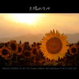 太陽の夕べ