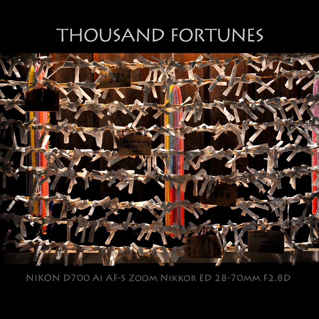 THOUSAND FORTUNES