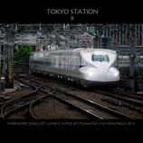 TOKYO STATION II