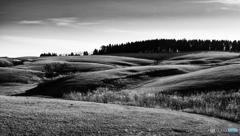 冬晴れの丘(5)