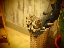 傘立ての猫兄弟の置物