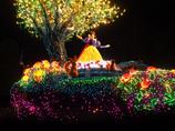 白雪姫 on the Light of the parade