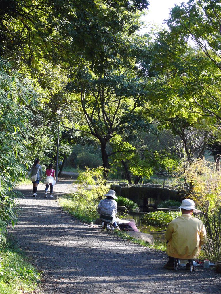 907新緑の中お散歩「都筑区」