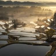NIKON NIKON D300で撮影した(輝きの朝)の写真(画像)