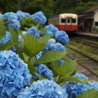 その他のカメラメーカー その他のカメラで撮影した(月崎駅にて)の写真(画像)