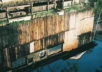 OLYMPUS OM-1で撮影した(川沿い(^^)/近江)の写真(画像)