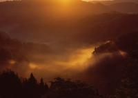 MAMIYA RB67 PROFESSIONAL SDで撮影した(黎明の谷)の写真(画像)