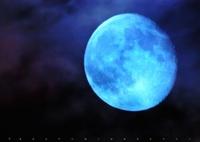 OLYMPUS E-PL1sで撮影した(Blue Moon)の写真(画像)