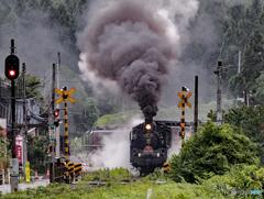 とぐろを巻いたような列車