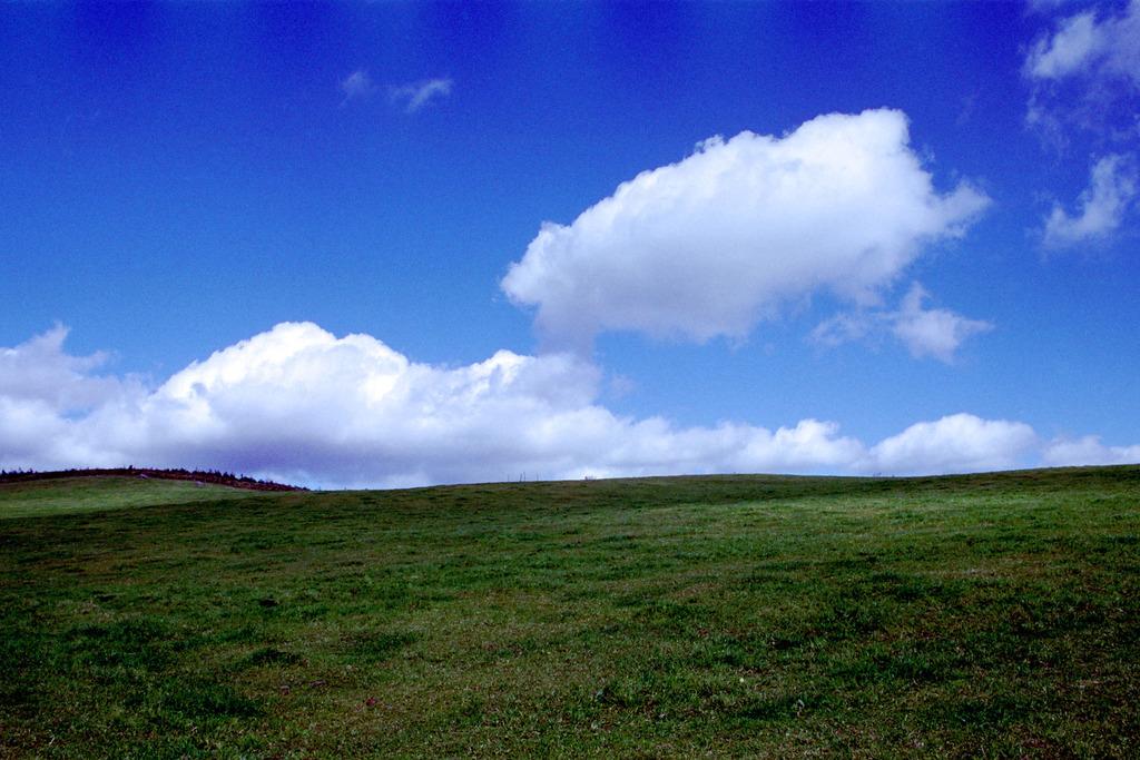 丘の上の白い雲