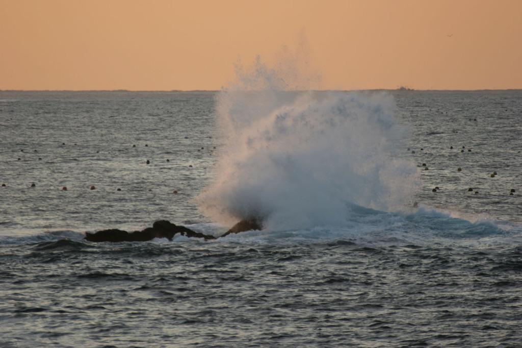 怒涛岩噛む・三陸海岸