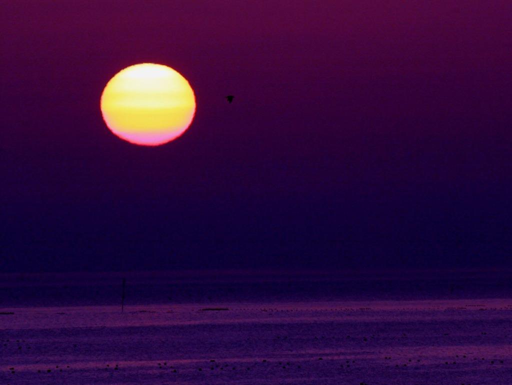 夜明・三陸海岸