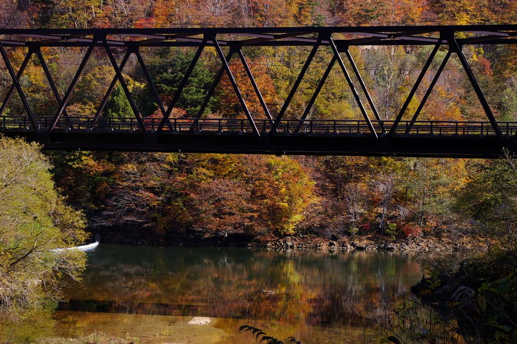 橋梁と紅葉