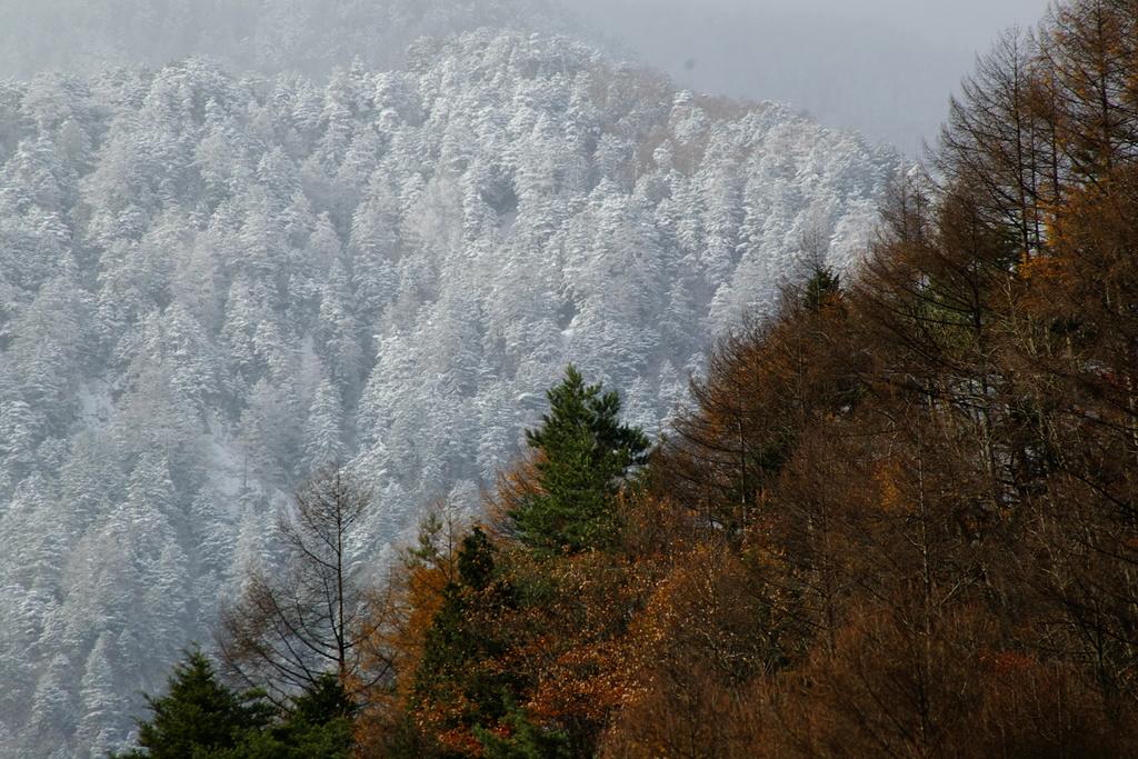 冬到来―木曽駒ヶ岳