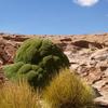 Bolivia - Salar De Uyuni -