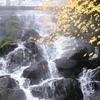 湯気の出ている滝
