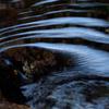 流れる水面の光のゆらぎ