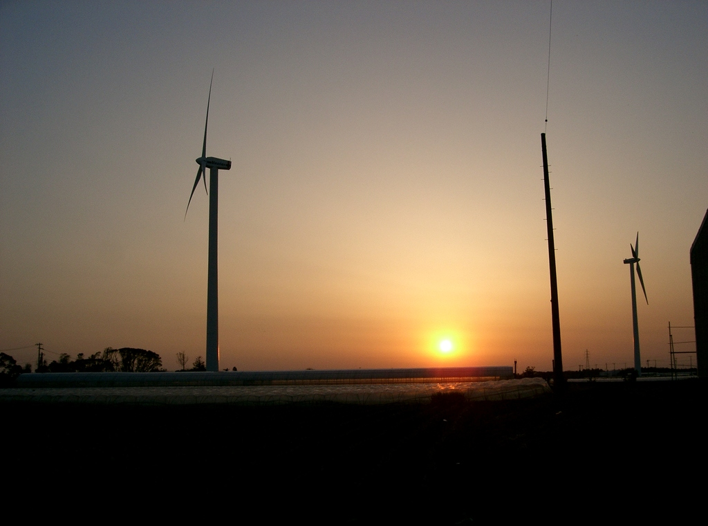 夕日に映える風車