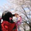 娘、桜撮る。
