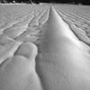 雪のアート