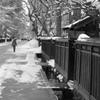 雪の武家屋敷通り 2