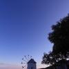 オリーブの薫る丘