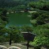 深緑の庭園