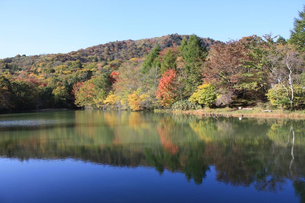 茶臼山の湖