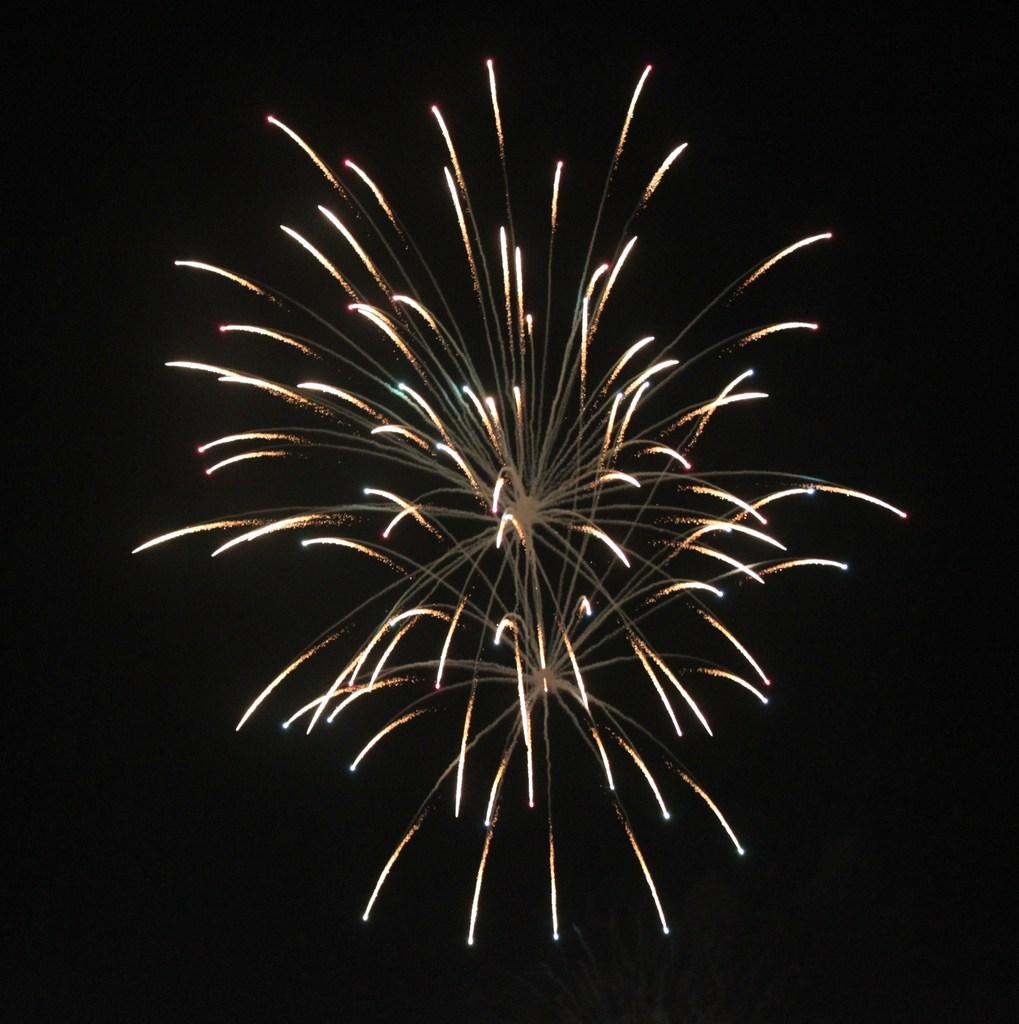 2009年とりで利根川大花火(2)