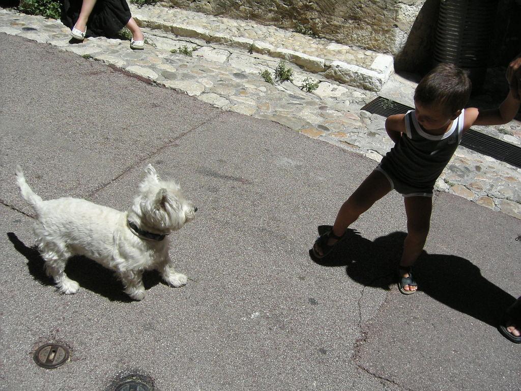 070706_chien et enfant_nice