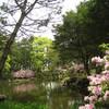萩城の庭園