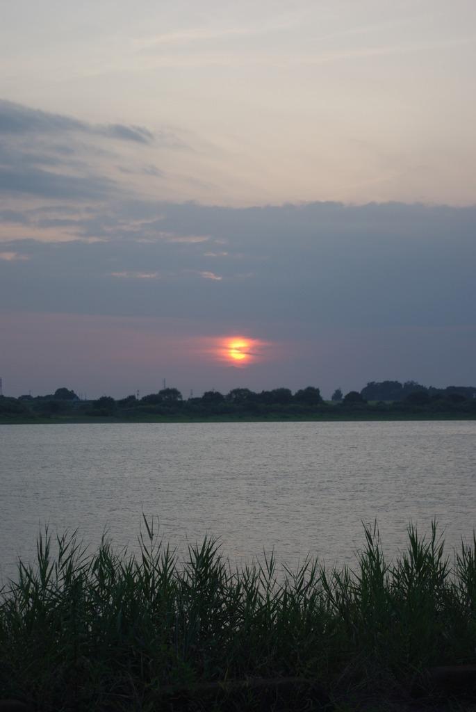 渡瀬遊水池の日没