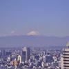 会社からの富士山