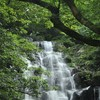 前原市・白糸の滝