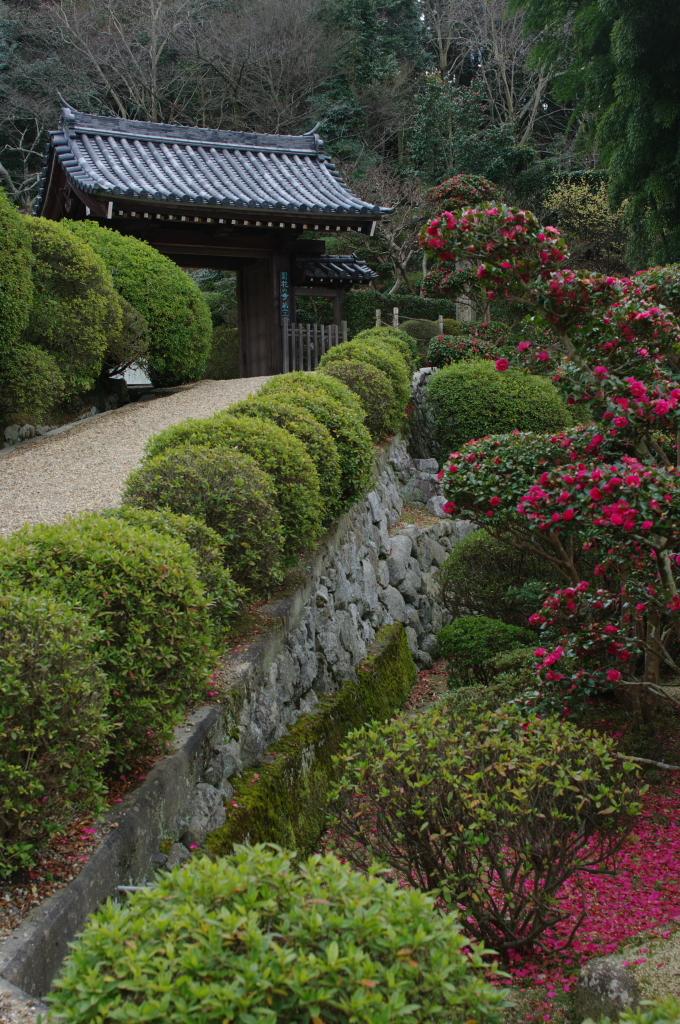 御所の花の寺