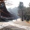 東大寺大仏殿の朝靄