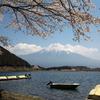 田貫湖から桜と富士山。