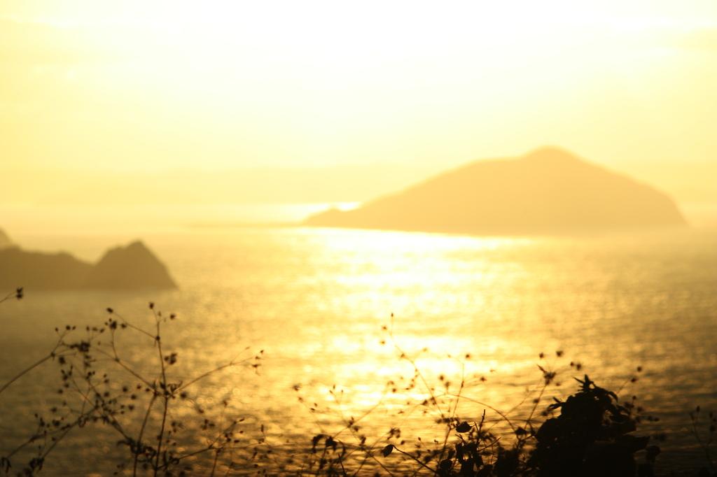 金色に染まる海