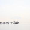 湖中より生える樹列
