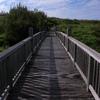 橋の向こう